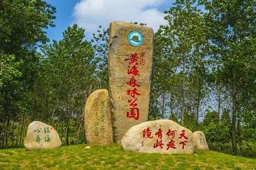 活动地点:东台黄海国家森林公园,西溪景区,甘港景区,安丰古镇