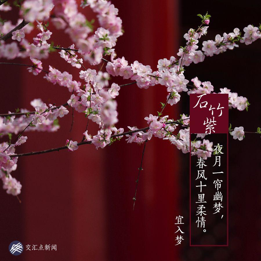 十三座城市十三首诗,三月三在江苏邂逅绝美 中国色