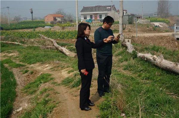 东台市人民检察院:提起滥伐林木刑事附带民事公益诉讼